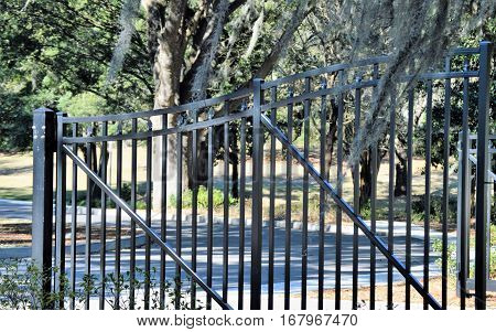 black gate fence Spanish moss oak trees