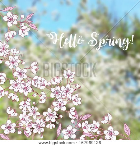 Background with sakura. Hand drawn spring blossom trees. Vector illustration with cherry blossoms.