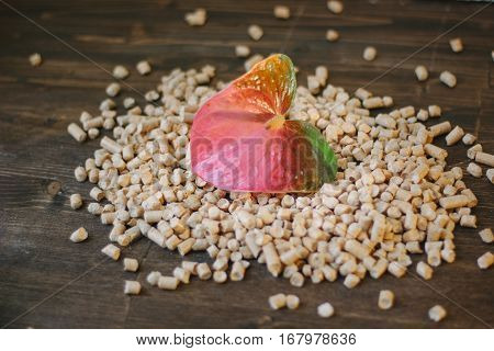 Fresh Flower And Wooden Pellets Over Brown Background