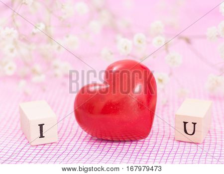Red Heart And White Flowers, And Wooden Cubes With Letters I And U. I Love You Concept.