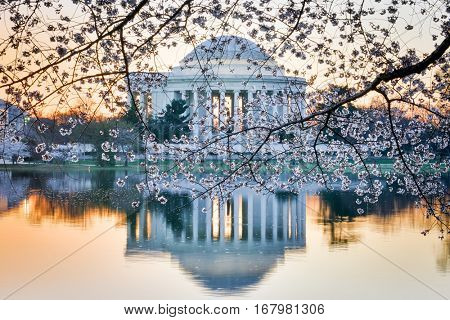 Washington DC during Cherry Blossom Festival - Jefferson Memorial during sunset