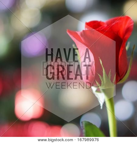 Have a great weekend words on red rose bokeh background