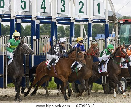 PYATIGORSK,RUSSIA - JUNE 3,2012:Start horse race for the traditional prize Dombay- the oldest and the largest racecourse in Russia on June 3,2012 in Pyatigorsk,Northern Caucasus,Russia.