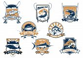 Sport fish isolated icons with rods. Sea bluefin banner and tuna symbol, freshwater finfish sign, river luce or pike and spinning with bait bait and bobbin. Fisherman club equipment or badge, sport or leisure club, fishery camp theme poster