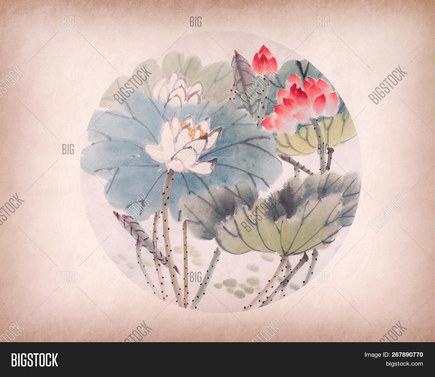 Lotus Flower Chinese Image Photo Free Trial Bigstock