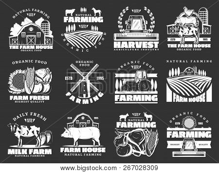 Farm And Farming Monochrome Vector Icons, Harvest And Animals. Organic Food And Meat, Milk And Cattl