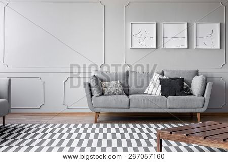 Dog's Posters On The Grey Wall Of Bright Living Room With Comfortable Grey Couch With Pillows, Real