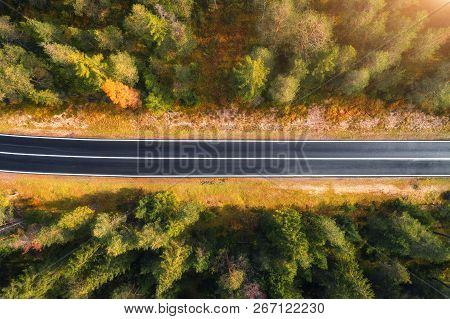 Aerial View Of The Road In Forest. Top View Of Asphalt Roadway