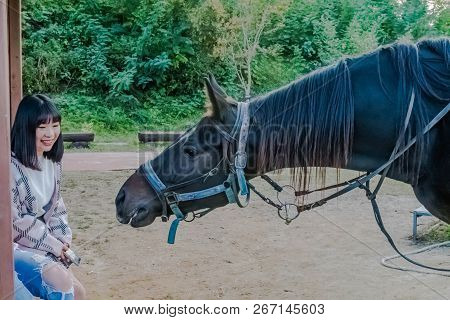 Nonsan, South Korea; October 14, 2018: Unidentified Asian Girl Sitting On Bench Smiles As Horse Lean