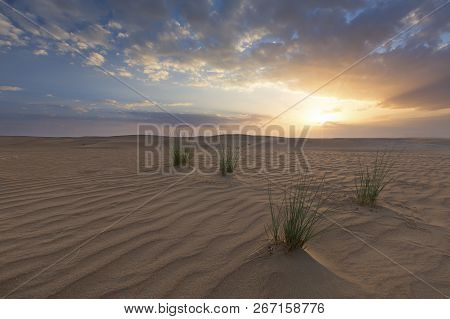 Landscape Of A Sand Dune And Grass With Clouds At Sunset