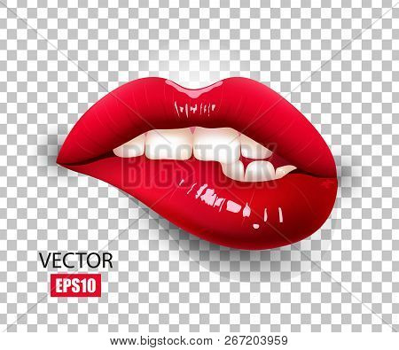 Beautiful Female Lips, Red Lipstick, Biting Lip, Sexy Lips. 3d Design. Vector Illustration.