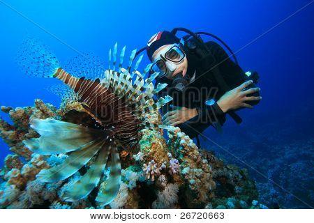 Scuba Diver and Lionfish (Pterois miles)