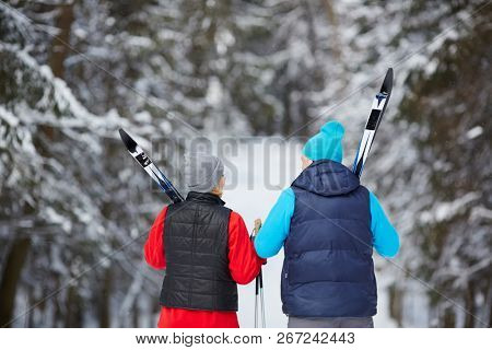 Back view of mature sporty couple in activewear carrying skiing equipment while moving in winter woods