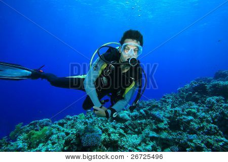 Scuba Diver exploring coral reef poster