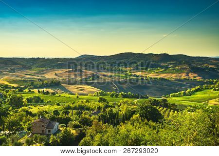 Tuscany Summer Countryside, Montepulciano Countryside Panorama And Rolling Hills. Siena, Italy Europ