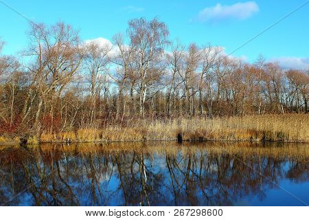 Beautiful autumn landscape. Beautiful autumn forest in lake. Blue lake water. Lake in autumn forest. Autumn forest reflected in the lake. Autumn nature. Russian forest in autumn. Autumn forest in the sun. The lake in Russia