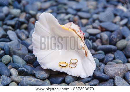 Wedding Accessories. A White Seashell With Wedding And Engagement Rings Lies On The Sea Pebbles.