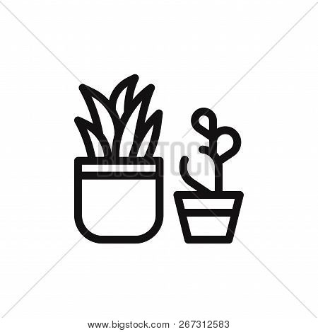 Plant Icon Isolated On White Background. Plant Icon In Trendy Design Style. Plant Vector Icon Modern