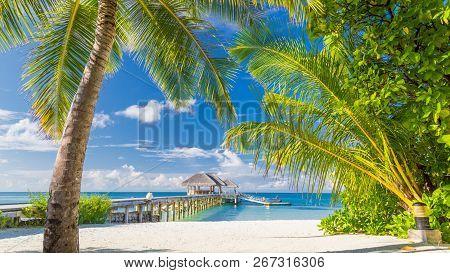 Maldives Paradise Beach. Perfect Tropical Island. Beautiful Palm Trees And Tropical Beach. Moody Blu
