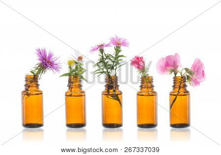 Bottle Of Essential Oil With Herbs. Nature Oil With Wildflowers.