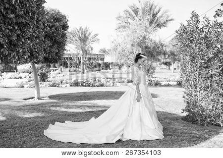 Wife In Perfect Wedding Dress. Wedding Fashion For Pretty Wife. Cute Wife Outdoor. Wife Woman On Bri