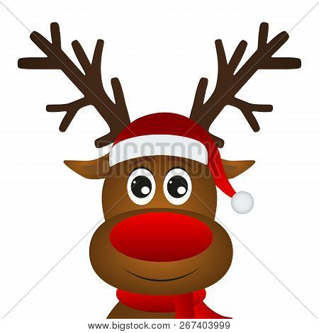 Funny Cartoon Christmas Reindeer On A White Background