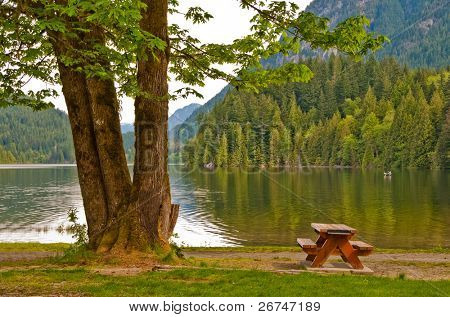 Picnic table in shade of triple tree at the beach of Bunzen Lake, Vancouver, Canada.