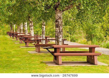 Beautiful picnic area at Porteau Cove park, Vancouver, Canada.
