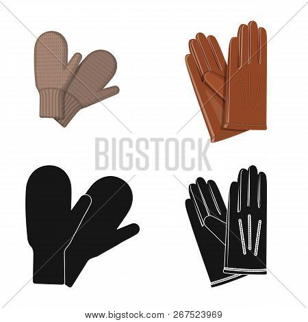Vector Illustration Of Glove And Winter Symbol. Collection Of Glove And Equipment Stock Vector Illus