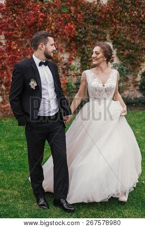 Gorgeous Bride And Stylish Groom Holding Hands And Walking At Wall Of Autumn Red Leaves. Sensual Wed