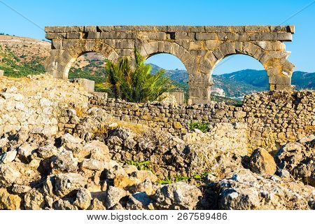 Roman Ancient city of Volubilis, Meknes, Unesco World Heritage Site in Morocco poster
