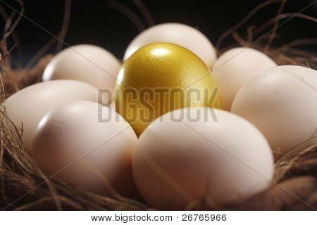 nest of egg with one golden egg