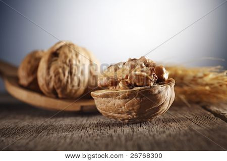 Walnut with wooden spoon and wheat.