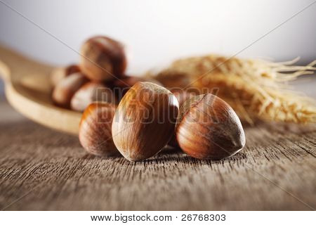 Hazelnuts with wooden spoon and wheat on table.