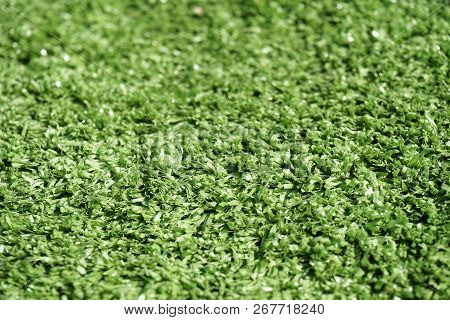 Close Up Green Grass Texture For Background
