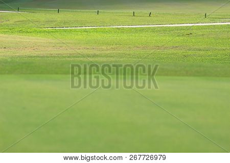 Perfect Grass Golf Course Field At Hk