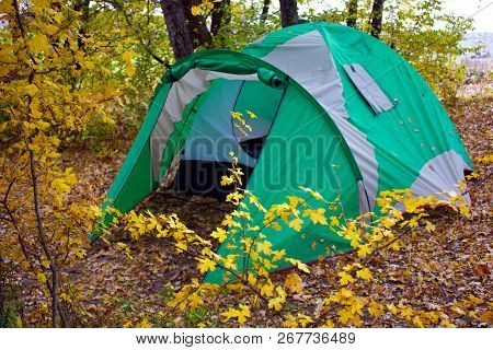 Tent In The Forest During The Holidays. Wild Rest In The Forest With Tents. Camping In The Forest. H