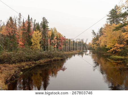 Colorful Autumn Forest Along The Wisconsin River