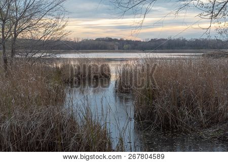 Autumn Scene On A Pond In A Marshland