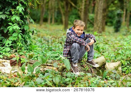 Go Camping With Me. Small Kid Enjoy Camping Trip. Small Boy Sit On Tree. Adorable Kid Relax In Woods
