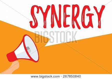 Text sign showing Synergy. Conceptual photo Interaction Cooperation between organizations Teamwork collaboration Megaphone loudspeaker speech bubbles important message speaking out loud. poster