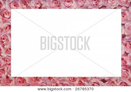 pink rose frame on white background,natural texture
