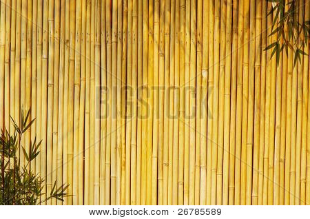 Light Golden bamboo Background great for any project. frame of bamboo-leaves background. Please take a look at my similar bamboo-images