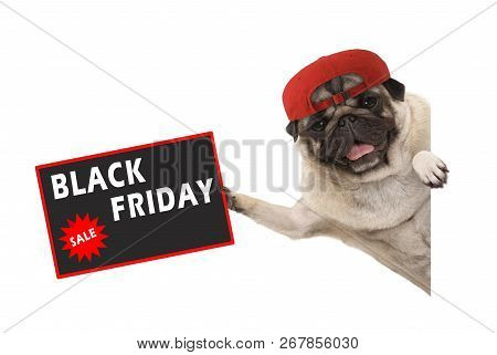 Frolic Pug Puppy Dog With Red Cap, Holding Up Sale Sign With Text Black Friday, Hanging Sideways Fro