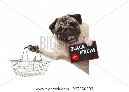 Happy Smiling Pug Puppy Dog, With Wire Metal Shopping Basket And Black Friday Sale Sign, Behind Whit