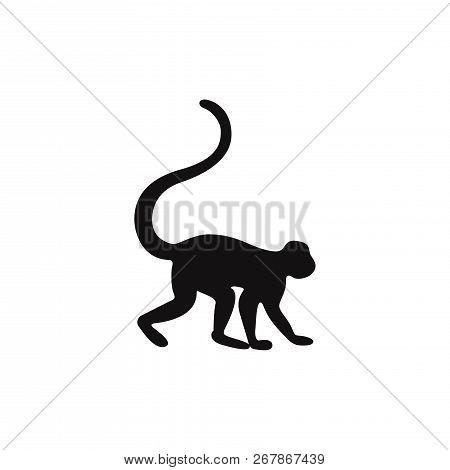 Monkey Icon Isolated On White Background. Monkey Icon In Trendy Design Style. Monkey Vector Icon Mod