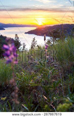 Sunset In Idaho