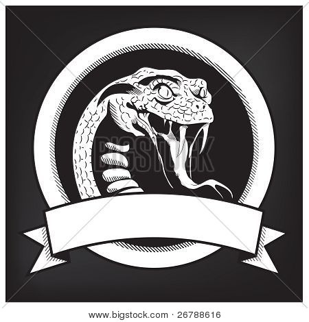 Snake Illustration Emblem