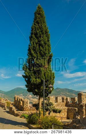 Stone fortress structures and the old walls of the fortress. Green trapezoidal tree. Alanya. Turkey poster