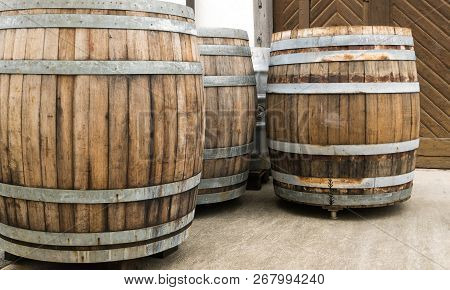 Old Traditional Oversize Wooden Barrels For Aging Red Pinot Noir Grapes For Barrique Wine